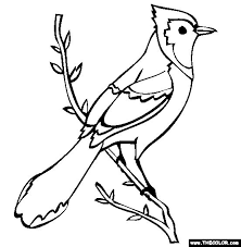 25 bird coloring pages ideas flower coloring
