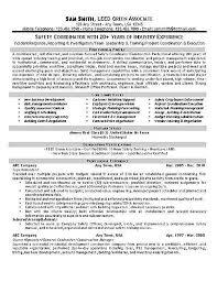 Logistics Coordinator Resume Sample by Download Safety Coordinator Resume Haadyaooverbayresort Com