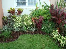 11 best jardines tropicales images on pinterest tropical gardens