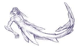 shark sketches by laitiel on deviantart