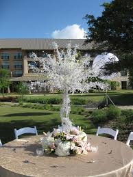 Home Decor San Antonio Dawn And Jason J W Marriott San Antonio Tx Alamo Plants U0026 Petals