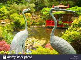 storks in japanese garden ornaments pond flowers water relaxation