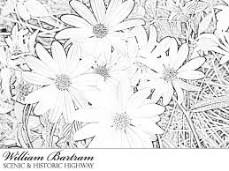 9 images scenery coloring pages nature coloring pages