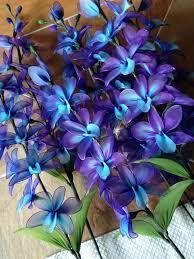 purple and blue orchid flowers stem flowers flower plant