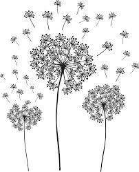 designs butterfly dandelion wall decal plus dandelion wall