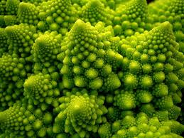 fractal pattern in nature earth s most stunning natural fractal patterns wired