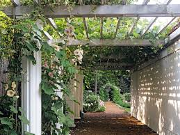 Pergola Corner Designs by Traditional Uses For Arches And Pergolas Hgtv