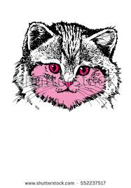 cat sketch stock images royalty free images u0026 vectors shutterstock