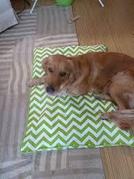 Homemade Dog Beds The 25 Best Homemade Dog Bed Ideas On Pinterest Homemade Pet