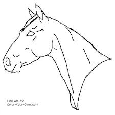 coloring pages quarter quarter mare headstudy coloring page