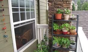 herb garden ideas for a balcony interior design