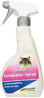 gerüche die katzen nicht mö katzenschreck katzen vertreiben mit system katzenschreck im test