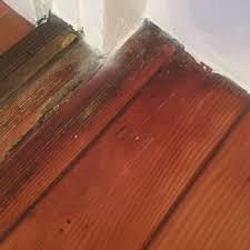 eco hardwood floors get quote flooring vancouver wa phone