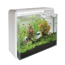 Wohnzimmertisch Aquarium Couchtisch Mit Integriertem Aquarium Raumteiler Aquarium In