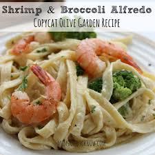 olive garden copycat olive garden alfredo sauce recipe shrimp and broccoli