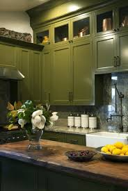 light olive green paintolive paint color code colours dulux