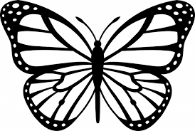 new butterfly to color cool ideas unknown resolutions outline