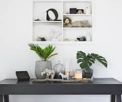 indoor plants nz 30 times an indoor plant added magic to an interior