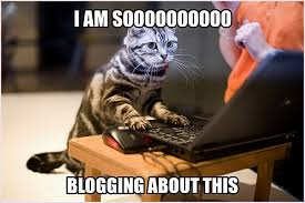 Diabetes Cat Meme - funny t1d and gluten free