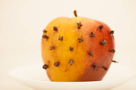 How To Get Rid Of Small Ants In Bathroom How To Get Rid Of House Flies With Cloves 5 Steps With Pictures