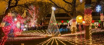 christmas tree lighting near me christmas tree lighting chicago lincoln park zoo bursts into