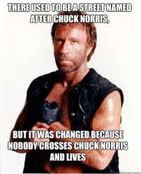 36 best chuck norris images on chuck norris facts