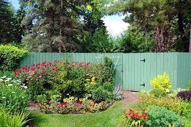 landscaping ideas hiding a colourbond fence fence design