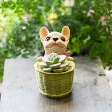 aliexpress com buy cute small decorative french dog resin cactus