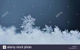 real snowflake stock photos u0026 real snowflake stock images alamy