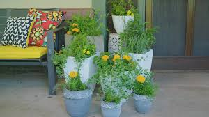 plants that keep mosquitoes away say no to mosquitoes video hgtv