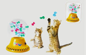 cat s play for foreign cats 13 international cat toys