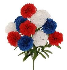 blue carnations carnations