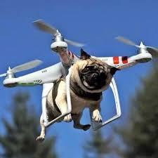I Believe I Can Fly Meme - i believe i can fly imgur