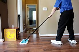 hardwood floor cleaning safe for children and pets zerorez ta bay