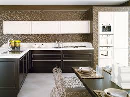 organized contemporary kitchen designs bending needs
