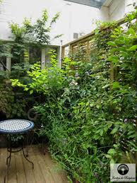 outdoor landscaping a country style small courtyard
