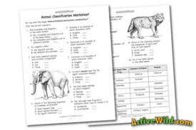animal classification for kids and students how we make sense of
