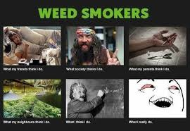 Weed Memes - what people think weed meme archives funny weed memes