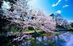 ธรรมชาติที่สวยงาม