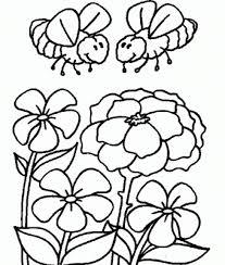 dibujo flores insectos colorear pintar