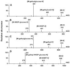 Factors Of 481 Molecules Free Full Text Phenolic Profiling Of Duchesnea