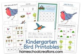 bird theme printables early learning printables