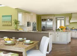 lime green kitchen ideas green kitchen ideas fresh green kitchen paint color schemes