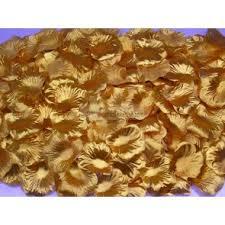 Brown Vase Fillers Foam Bouquet Holders Vase Fillers And Floralytes U0026 Submerged