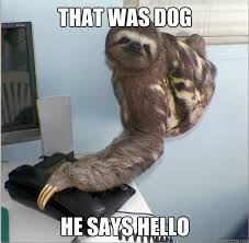 Yes This Is Dog Meme - image 231791 yes this is dog know your meme