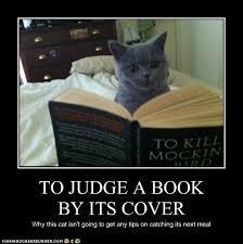 To Kill A Mockingbird Cat Meme - i can has cheezburger to kill a mockingbird funny animals