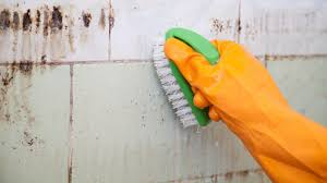 How To Wash Walls by How To Clean Up Mold In Bathroom Bathroom Trends 2017 2018