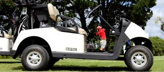 ezgo rxv golf cart