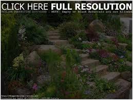 backyards awesome backyard vegetable garden design ideas home