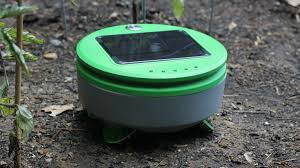 tertill the solar powered weeding robot for home gardens by